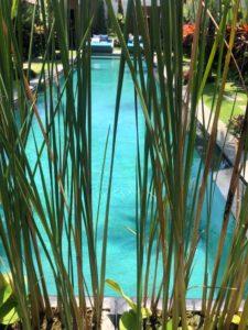 Margelle de piscine taupo green